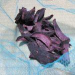 池公園の土曜市で紫芋の干し芋をゲット