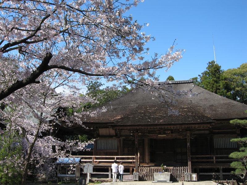 高知県 国分寺